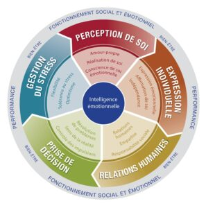 Roue intelligence emotionnelle